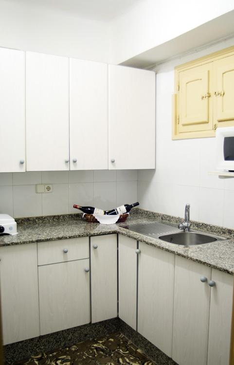 Cocina apartamento 1 dormitorio